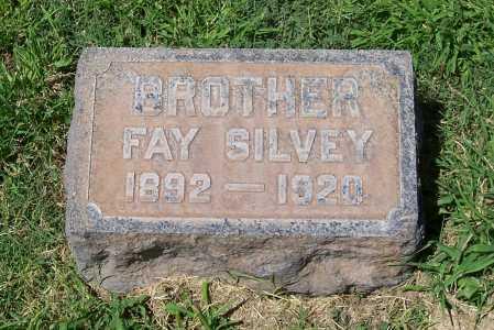 SILVEY, FAY - Maricopa County, Arizona | FAY SILVEY - Arizona Gravestone Photos