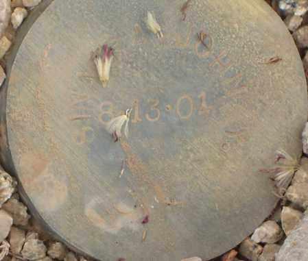 SINAERA, JOHN Y. - Maricopa County, Arizona | JOHN Y. SINAERA - Arizona Gravestone Photos