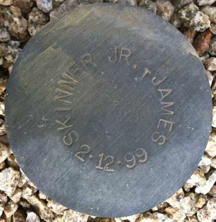 SKINNER, JAMES, JR - Maricopa County, Arizona | JAMES, JR SKINNER - Arizona Gravestone Photos