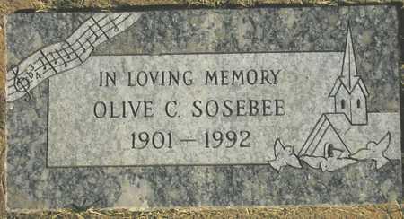 SOSEBEE, OLIVE C. - Maricopa County, Arizona   OLIVE C. SOSEBEE - Arizona Gravestone Photos