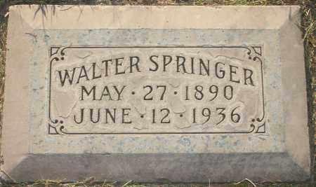 SPRINGER, WALTER - Maricopa County, Arizona | WALTER SPRINGER - Arizona Gravestone Photos