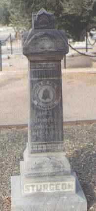 STURGEON, JAMES E. - Maricopa County, Arizona | JAMES E. STURGEON - Arizona Gravestone Photos
