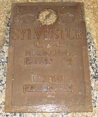 SYLVESTER, NORMAN G. - Maricopa County, Arizona | NORMAN G. SYLVESTER - Arizona Gravestone Photos