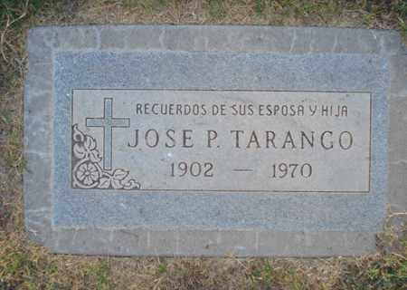 TARANGO, JOSE P. - Maricopa County, Arizona   JOSE P. TARANGO - Arizona Gravestone Photos