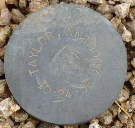 TAYLOR, ANTHONY - Maricopa County, Arizona | ANTHONY TAYLOR - Arizona Gravestone Photos