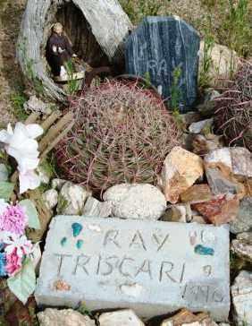 TRISCARI, RAY - Maricopa County, Arizona   RAY TRISCARI - Arizona Gravestone Photos