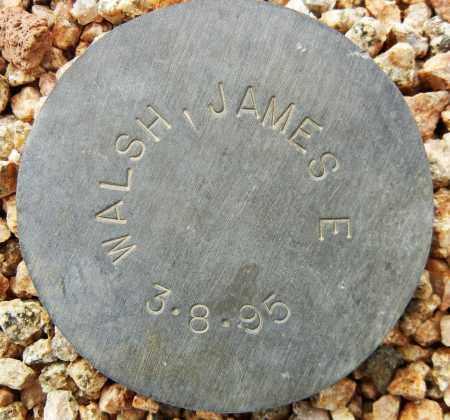 WALSH, JAMES E. - Maricopa County, Arizona | JAMES E. WALSH - Arizona Gravestone Photos