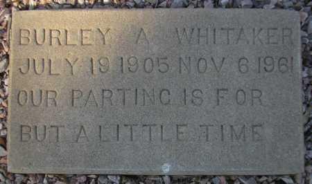 WHITAKER, BURLEY A. - Maricopa County, Arizona | BURLEY A. WHITAKER - Arizona Gravestone Photos