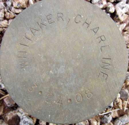 WHITAKER, CHARLINE - Maricopa County, Arizona | CHARLINE WHITAKER - Arizona Gravestone Photos