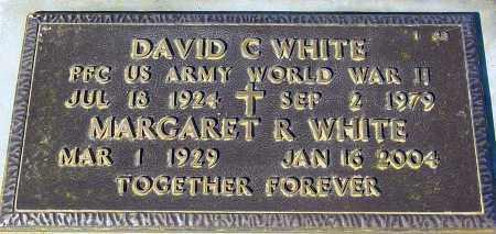 WHITE, DAVID C. - Maricopa County, Arizona | DAVID C. WHITE - Arizona Gravestone Photos