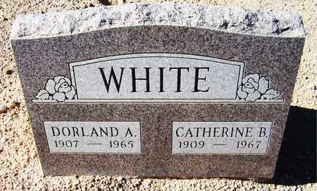 WHITE, CATHERINE B. - Maricopa County, Arizona   CATHERINE B. WHITE - Arizona Gravestone Photos