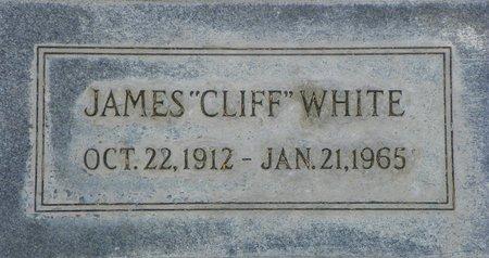 WHITE, JAMES - Maricopa County, Arizona | JAMES WHITE - Arizona Gravestone Photos