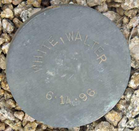 WHITE, WALTER - Maricopa County, Arizona   WALTER WHITE - Arizona Gravestone Photos