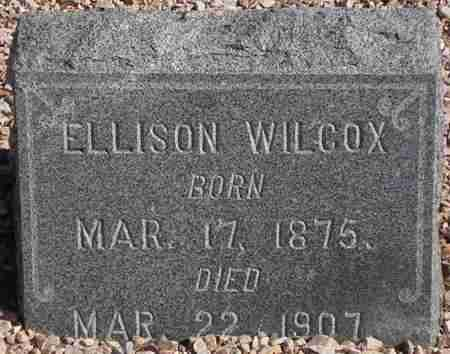 WILCOX, ELLISON - Maricopa County, Arizona | ELLISON WILCOX - Arizona Gravestone Photos