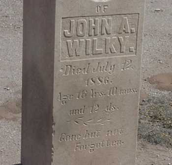 WILKY, JOHN A. - Maricopa County, Arizona | JOHN A. WILKY - Arizona Gravestone Photos