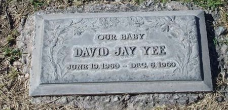 YEE, DAVID JAY - Maricopa County, Arizona | DAVID JAY YEE - Arizona Gravestone Photos