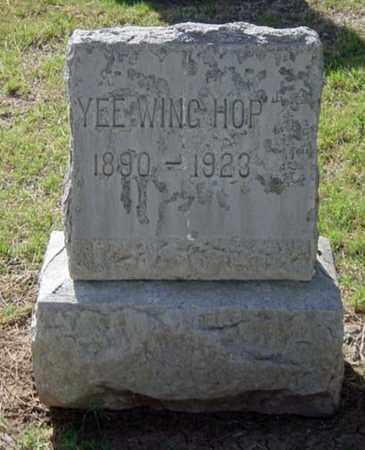 YEE, WING HOP - Maricopa County, Arizona   WING HOP YEE - Arizona Gravestone Photos