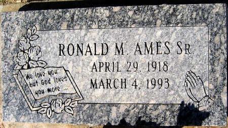 AMES, RONALD M - Mohave County, Arizona | RONALD M AMES - Arizona Gravestone Photos