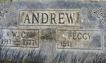 ANDREW, WILLIAM C - Mohave County, Arizona   WILLIAM C ANDREW - Arizona Gravestone Photos