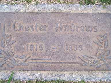 ANDREWS, CHESTER - Mohave County, Arizona | CHESTER ANDREWS - Arizona Gravestone Photos