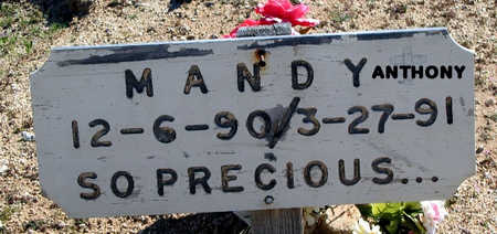 ANTHONY, MANDY - Mohave County, Arizona | MANDY ANTHONY - Arizona Gravestone Photos