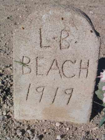 BEACH, L B - Mohave County, Arizona   L B BEACH - Arizona Gravestone Photos