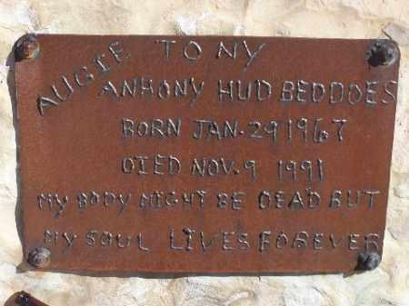 BEDDOES, ANTHONY - Mohave County, Arizona   ANTHONY BEDDOES - Arizona Gravestone Photos