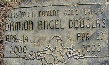 DOUGLAS, DAMION ANGEL - Mohave County, Arizona   DAMION ANGEL DOUGLAS - Arizona Gravestone Photos