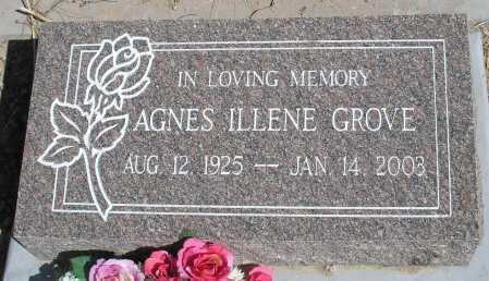 GROVE, AGNES ILLENE - Mohave County, Arizona | AGNES ILLENE GROVE - Arizona Gravestone Photos
