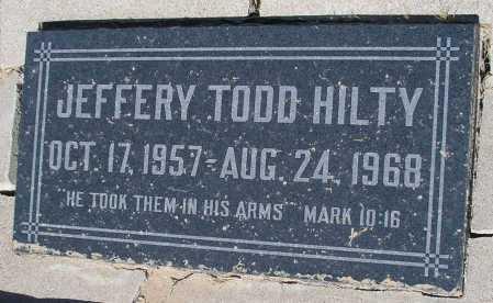 HILTY, JEFFERY TODD - Mohave County, Arizona   JEFFERY TODD HILTY - Arizona Gravestone Photos
