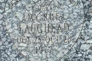 LAUGHEAD, AMY RHEA - Mohave County, Arizona | AMY RHEA LAUGHEAD - Arizona Gravestone Photos
