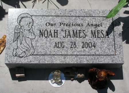 MESA, NOAH JAMES - Mohave County, Arizona | NOAH JAMES MESA - Arizona Gravestone Photos