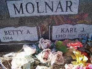 MOLNAR, KARL J - Mohave County, Arizona | KARL J MOLNAR - Arizona Gravestone Photos