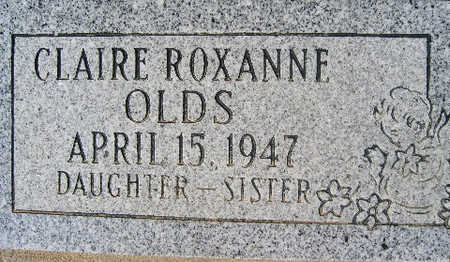 OLDS, CLAIRE ROSEANNE - Mohave County, Arizona | CLAIRE ROSEANNE OLDS - Arizona Gravestone Photos