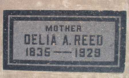 REED, DELIA A. - Mohave County, Arizona | DELIA A. REED - Arizona Gravestone Photos