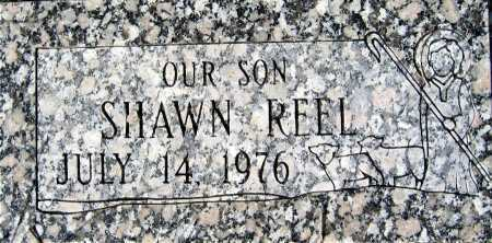 REEL, SHAWN - Mohave County, Arizona | SHAWN REEL - Arizona Gravestone Photos