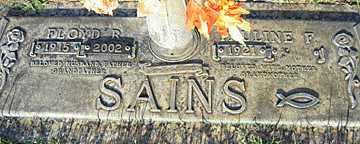 SAINS, FLOYD R - Mohave County, Arizona | FLOYD R SAINS - Arizona Gravestone Photos