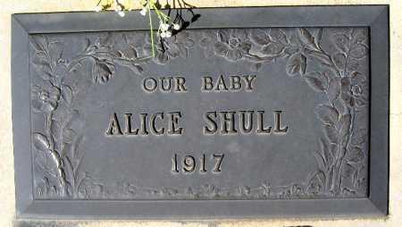 SHULL, ALICE - Mohave County, Arizona | ALICE SHULL - Arizona Gravestone Photos