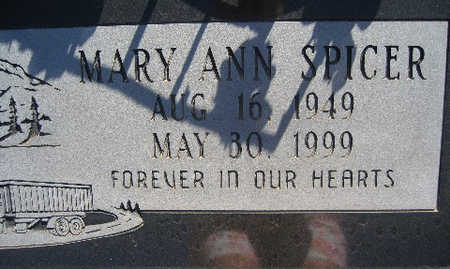SPICER, MARY ANN - Mohave County, Arizona | MARY ANN SPICER - Arizona Gravestone Photos