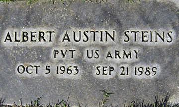 STEINS, ALBERT AUSTIN - Mohave County, Arizona | ALBERT AUSTIN STEINS - Arizona Gravestone Photos