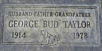 TAYLOR, GEORGE WILLIAM - Mohave County, Arizona   GEORGE WILLIAM TAYLOR - Arizona Gravestone Photos