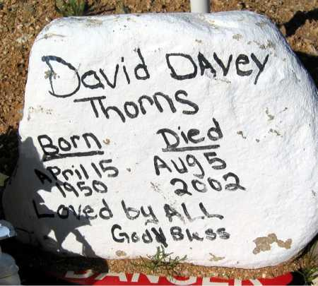 THORNS, DAVID - Mohave County, Arizona | DAVID THORNS - Arizona Gravestone Photos