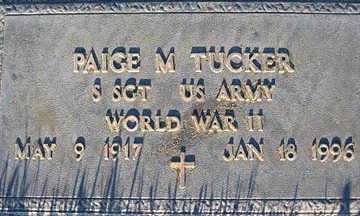 TUCKER, PAIGE M - Mohave County, Arizona   PAIGE M TUCKER - Arizona Gravestone Photos