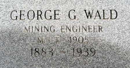 WALD, GEORGE G - Mohave County, Arizona   GEORGE G WALD - Arizona Gravestone Photos