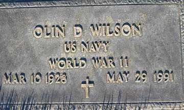 WILSON, OLIN D - Mohave County, Arizona | OLIN D WILSON - Arizona Gravestone Photos