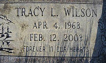 WILSON, TRACY L - Mohave County, Arizona   TRACY L WILSON - Arizona Gravestone Photos