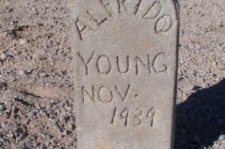 YOUNG, ALFRIDO - Mohave County, Arizona | ALFRIDO YOUNG - Arizona Gravestone Photos