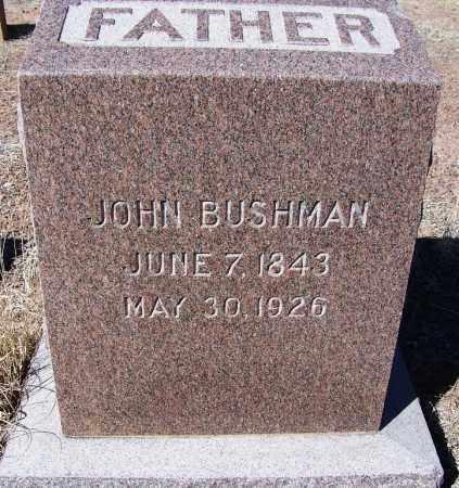 BUSHMAN, JOHN - Navajo County, Arizona | JOHN BUSHMAN - Arizona Gravestone Photos