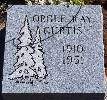 CURTIS, ORGLE RAY - Navajo County, Arizona | ORGLE RAY CURTIS - Arizona Gravestone Photos