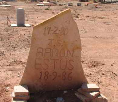 ESTUS, J.S. AARON - Navajo County, Arizona | J.S. AARON ESTUS - Arizona Gravestone Photos